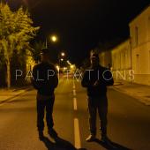 WL Crew - Palpitations